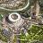 Fiumicino, Montino: ''Lo Stadio della Roma facciamolo qui''