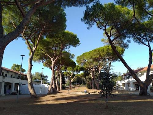 piazzaMorbidelli cerenova ilmamilio