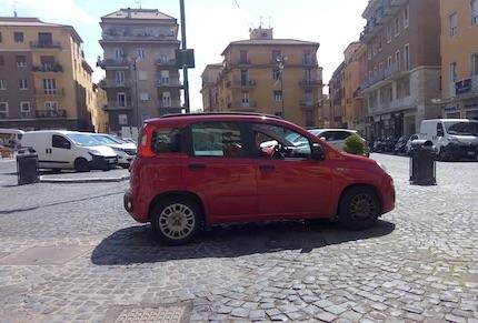 panda piazzaRoma frascati ilmamilio