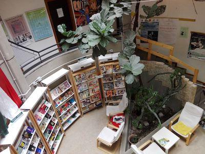 biblioteca genzano ilmamilio