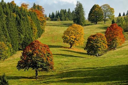 autunno ilmamilio